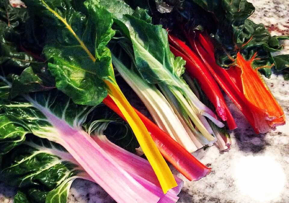 Indian Spiced Rainbow Swiss Chard